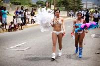 tj876 Jamaica Carnival Road March 2013-61