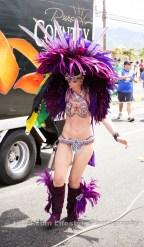 tj876 Jamaica Carnival Road March 2013-81