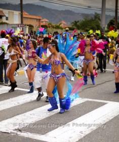 tj876 Jamaica Carnival Road March 2013-97