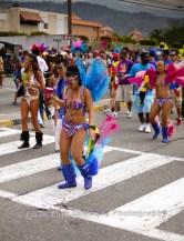 tj876 Jamaica Carnival Road March 2013-98