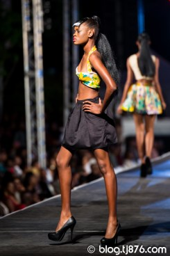 tj876-Fashion-Block-2014-9
