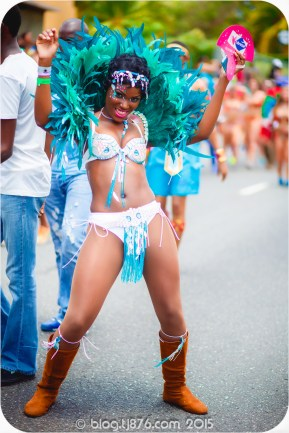 tj876 Jamaica Carnival 2015 (163)