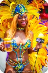 tj876 Jamaica Carnival 2015 (188)