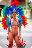 tj876 Jamaica Carnival 2015 (3)