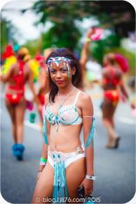tj876 Jamaica Carnival 2015 (85)