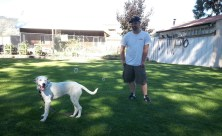 justin-with-their-new-dog-maggie-at-elser-reunion