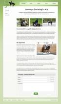 Portfolio item: Erin Shea Dressage - Dressage training page.