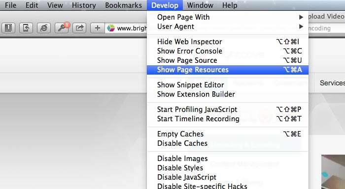 A screenshot showing how to open Safari's Page Resources panel.