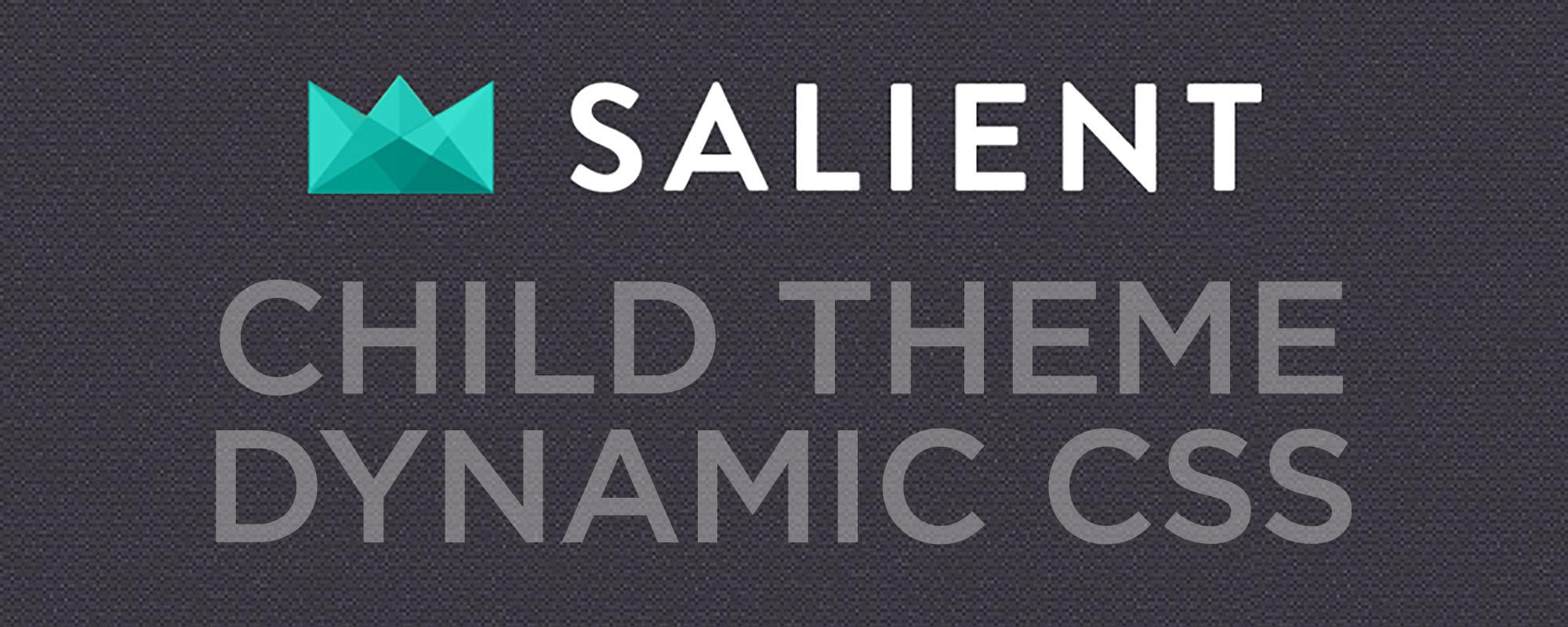 Salient Child Theme Dynamic CSS.