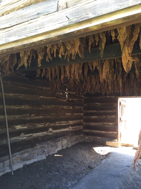 Tobacco Barn Homestead 1850
