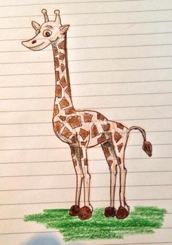 Giraffbilder gir ikke Facebookvirus! (2/2)
