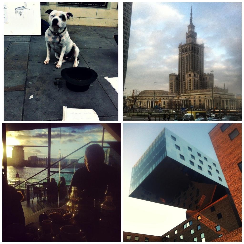 reisblog foto jaaroverzicht