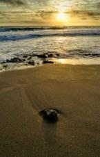 Sunrise at Stuart Rocks
