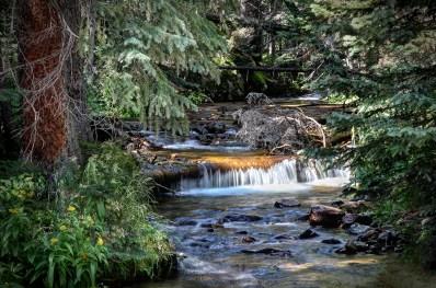 Rocky Mountain NP - Stream