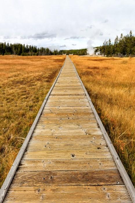 Boardwalk at Upper Geyser Basin