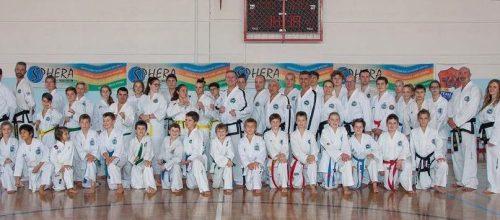 Udeležba na tehničnem in borbenem seminarju v Padovi, Italija