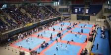 panellinio kypello taekwondo 2015-fe