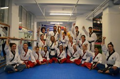 as pagratios afieroma poomsae team (30)