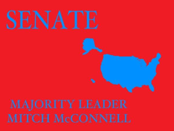 new senate