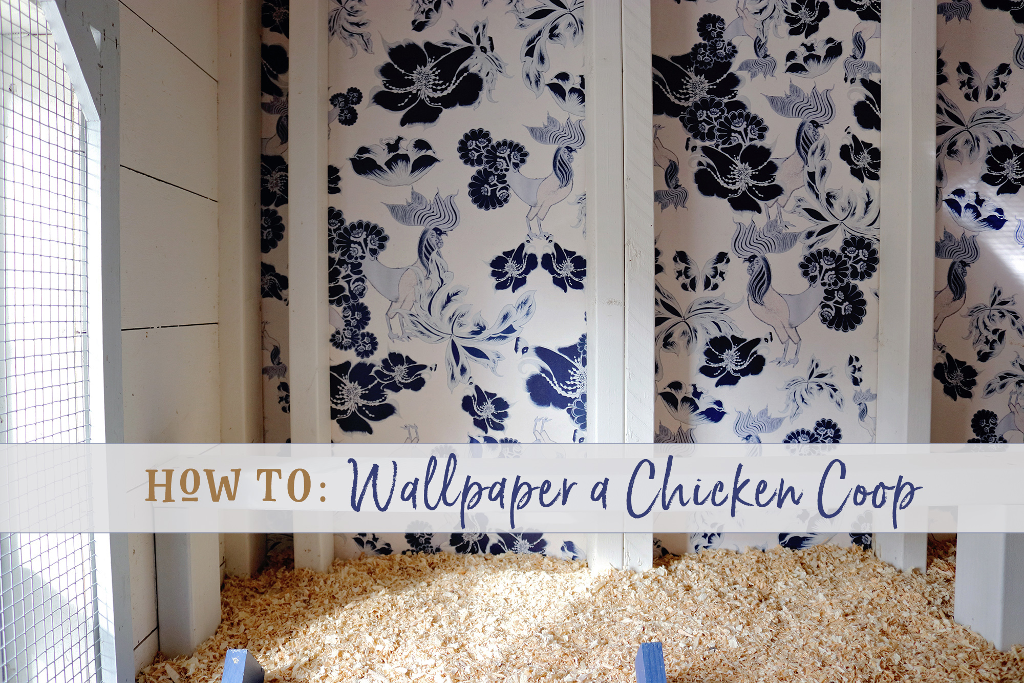 Three Little Blackbirds - How to Wallpaper a Chicken Coop