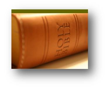 11am Bible Study
