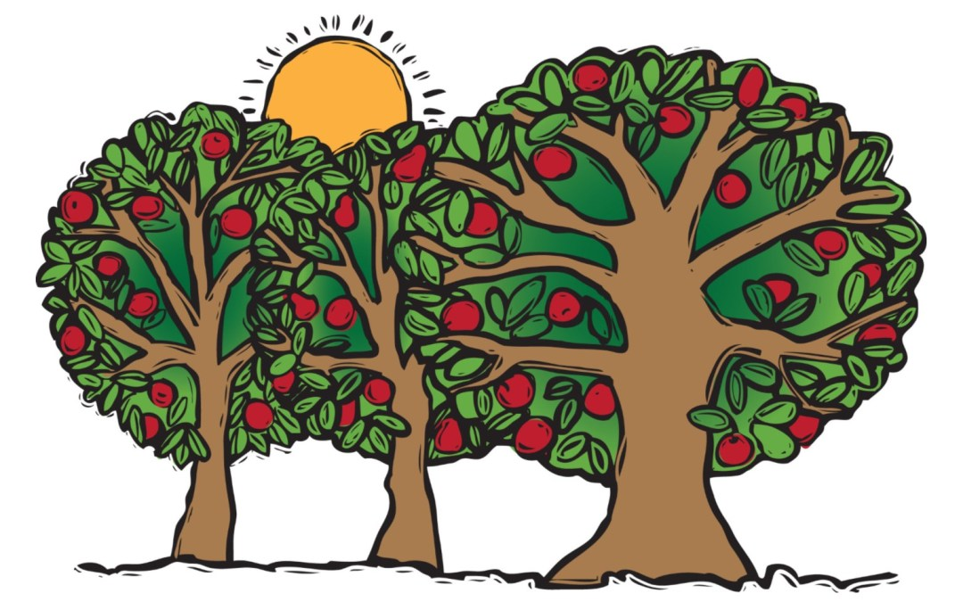 MLM Orchard Work Day – April 22