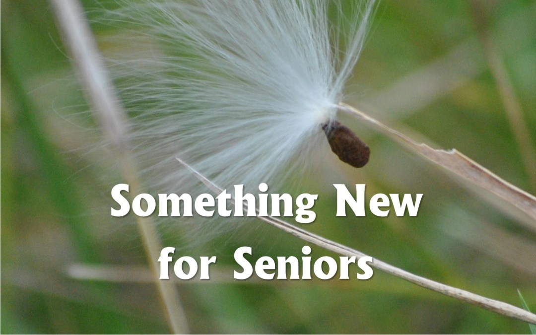 Something New for Seniors!