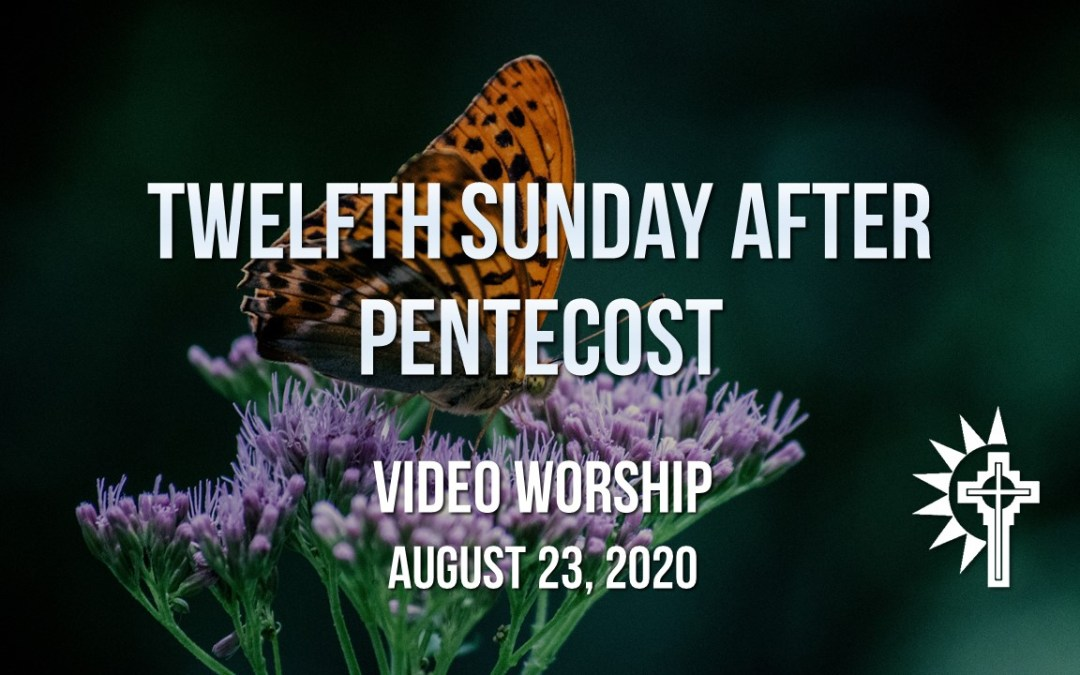 Sunday Worship – August 23