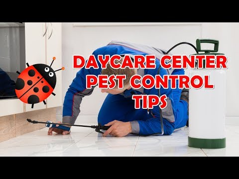 Advice On Daycare Center Pest Control - TLCSchools Plano TX uploaded to TLCSchools.com Texas