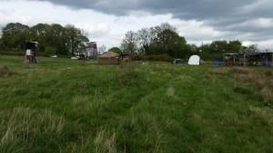 TLIO yurt at Yorkley Court 9 May 2015