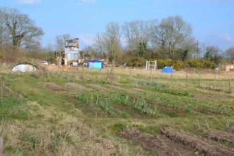 Yorkley-Court-field