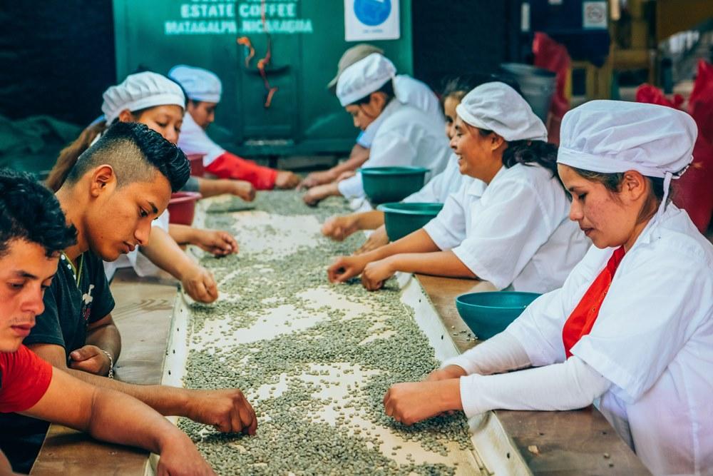 品味尼國況味。黑森林咖啡莊園 | TRAVELER Luxe