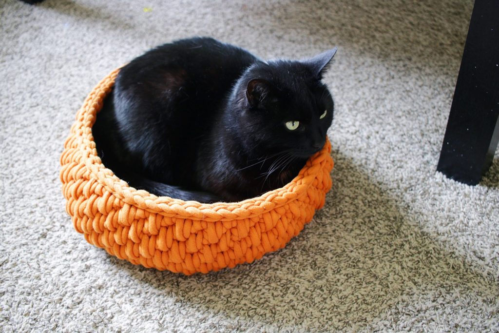 Make the Big Little Pet Bed, a FREE crochet pattern made in partnership with Yarnspirations. Made with Bernat Maker Big, a jumbo size yarn, you can work up a customizable crochet cat bed in just an afternoon. Practice the spike stitch, working in the round, working in a spiral, and the crochet invisible join. Find the free pattern and links to all of my favorite tools in the post. |TLYCBlog.com