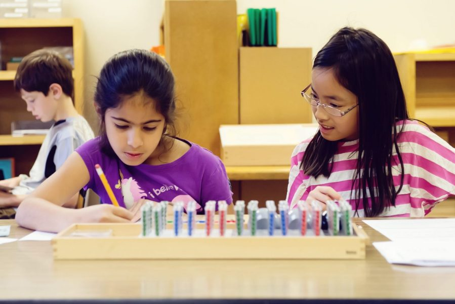 Lower Elementary Division, The Montessori Academy of Arlington, Private School Arlington TX