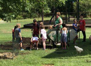 Elementary Outdoor Work, Montessori Private School, Arlington TX