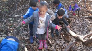 Toddler Outdoor Exploration, Montessori Private School, Arlington TX