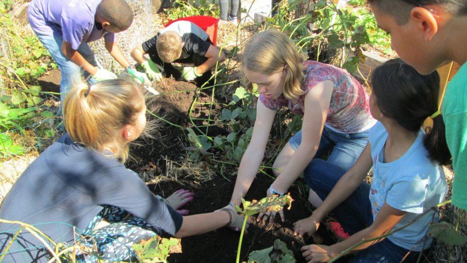 Interdependence, Montessori Private School, Arlington TX