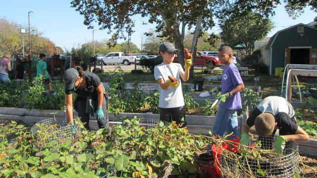 Days of Service, Montessori Private School, Arlington TX