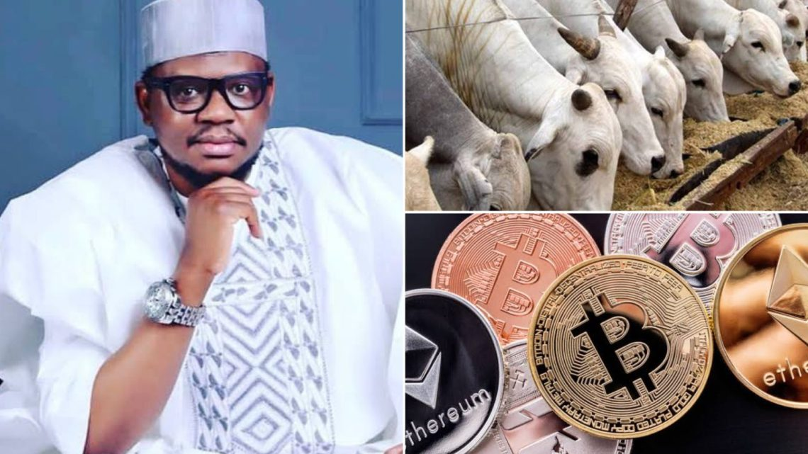 Cowtocurrency: 'Cow Ranching Business More Lucrative Than All Cryptocurrencies' – Ex-Presidential Aspirant, Adamu Garba