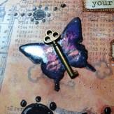 primabutterfly