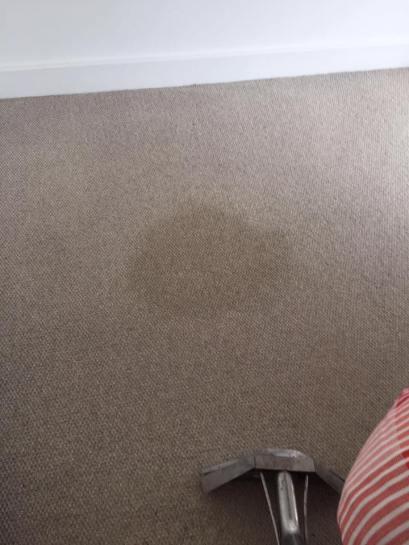 Carpet clean Res