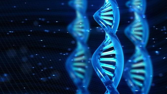 Вчені створили дивний вигляд напівсинтетичного життя, в ДНК якої налічується три пари підстав