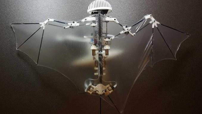 Вчені зробили робота-кажана