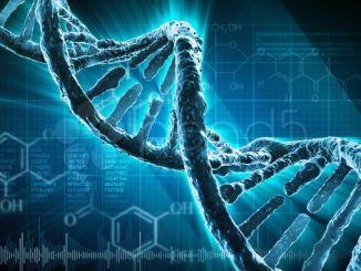 Вчені: можна створити резервну копію всього Інтернету на грамі ДНК
