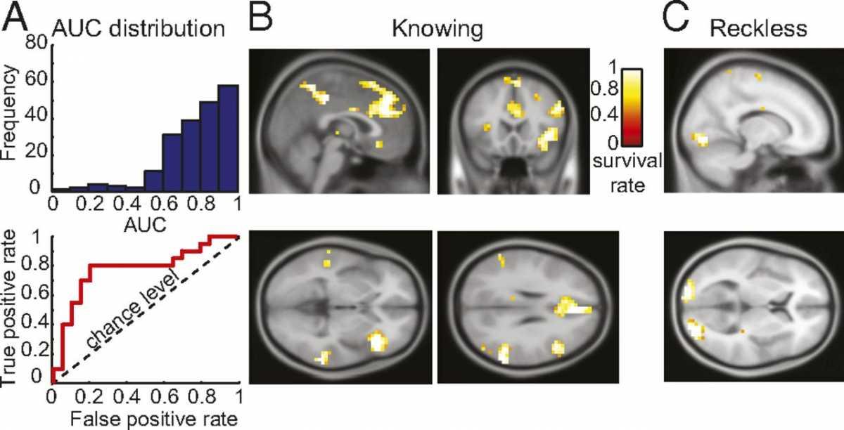 Нейронну мережу навчили вгадувати злочинний умисел