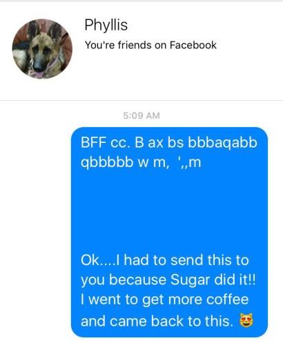 Sugar_text