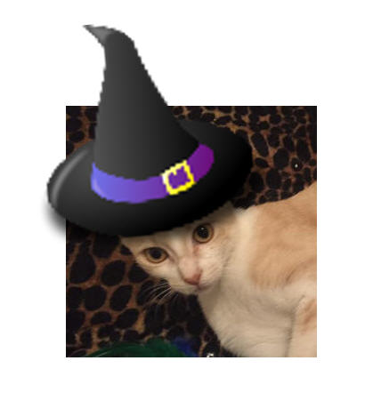 Now that Marmalade is retired from raising kittens, she has lots of free time to do things like wear a witch's hat
