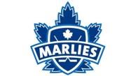 Game #1: Toronto Marlies 4 vs. Bridgeport Sound Tigers 1