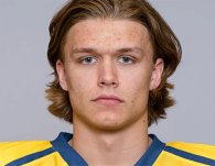 Draft Profile – Rasmus Sandin