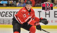 Marlies Acquire Trent Bourque in Trade With Belleville